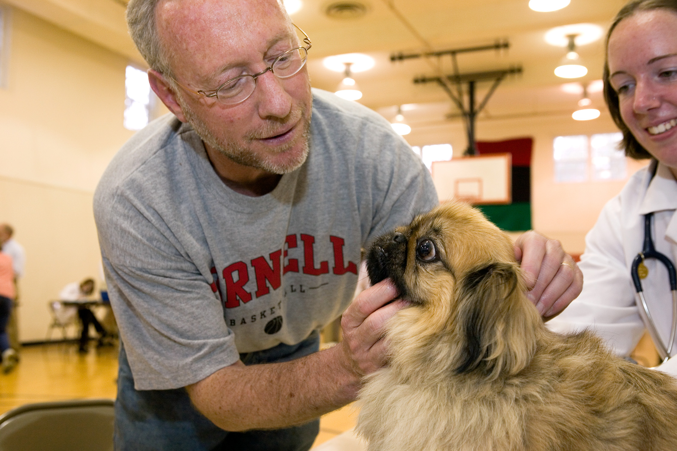 Veterinary schools expand, with focus on large animals