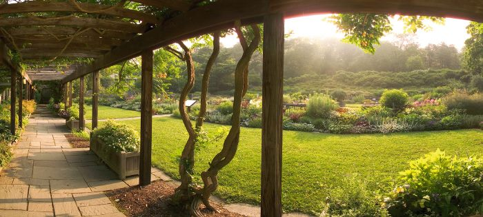 cornell plans to drop plantations from name of its gardens