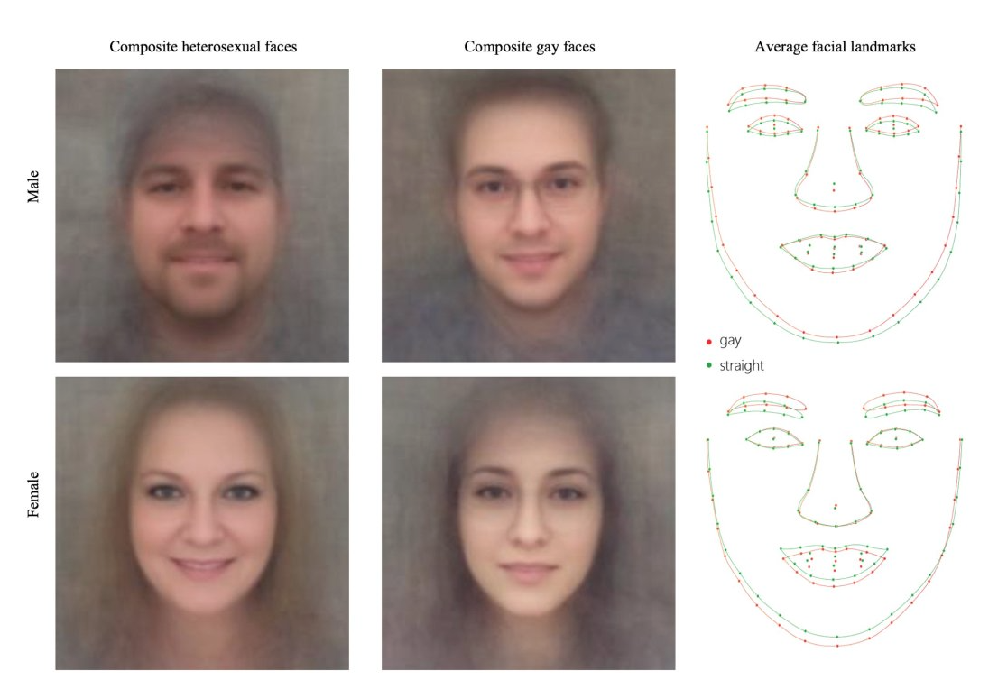 "Image of ""composite heterosexual faces"" and ""composite gay faces,"" both male and female, along with sketch of average facial landmarks."