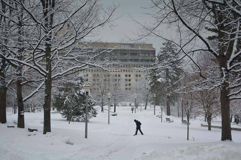 compilation  photographs  campuses  snow  juno