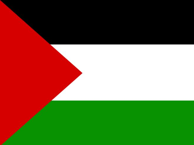 Student ordered to remove Palestinian flag alleges free speech violation